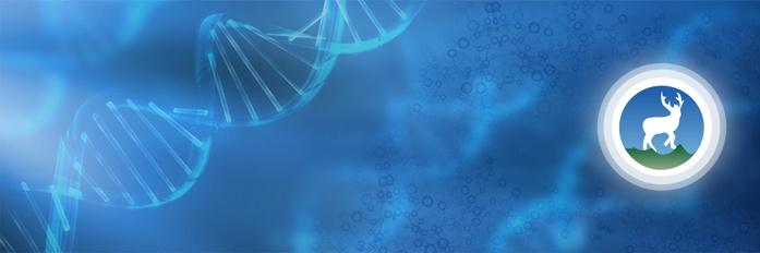 Genomics at Deerwalk